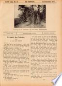 14 sep 1917
